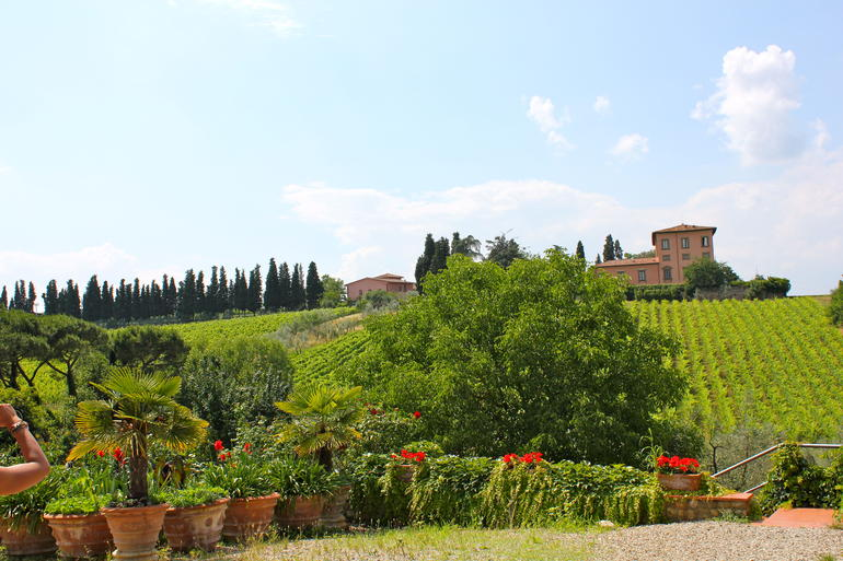 View of Gardens - Florence