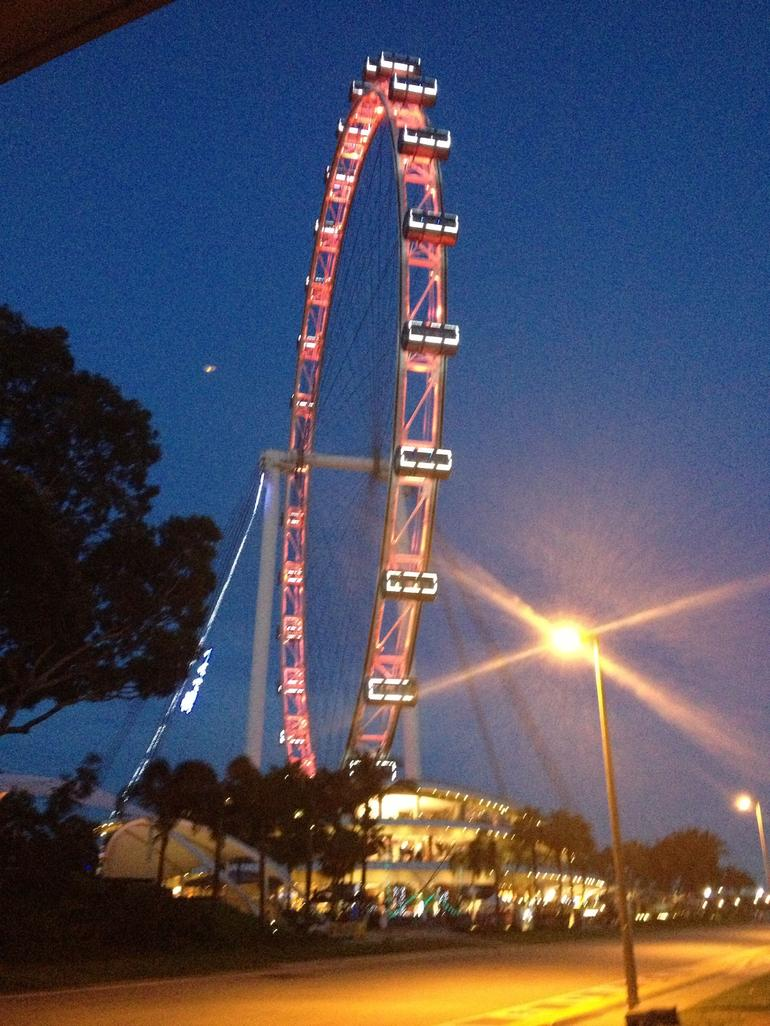 Singapore Flyer by night - Singapore