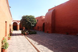 The monastery was so cool! Lots of little alleys to explore and very colorful and beautiful, Bandit - July 2014
