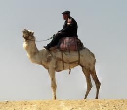 Keeping watch over the tourists at the Pyramids - if the hawkers bother you too much he whips them!! - March 2008