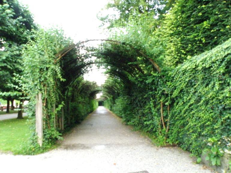 Who ran down here? - Salzburg
