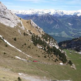The cog-wheel train ahead of ours on the decent. Look at the Alps! , Lindsay R - June 2016