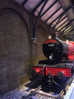 The Hogwarts Express, Bruno P - June 2016