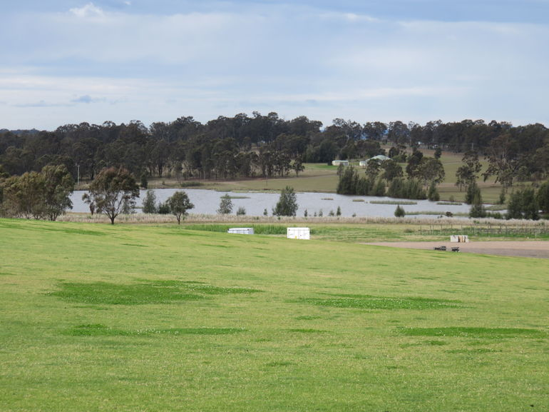 Hunter Valley Wine Tour from Sydney incl Lunch, Cheese, Chocolate and Distillery