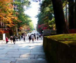 Nikko Toshogu was built as a shrine and mausoleum to deify Ieyasu Tokugawa , Panda - November 2013