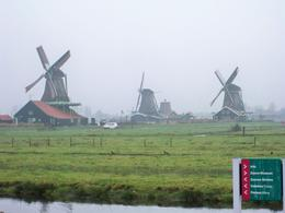This was on the way to the cheese factory, where we had the best Gouda cheese we ever had, Denise R - November 2009