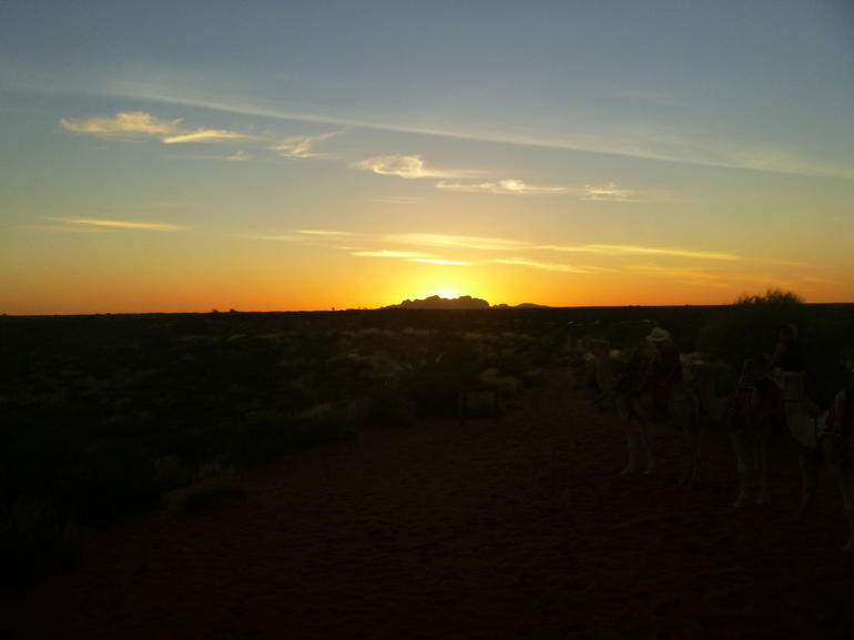 Uluru Camel Express, Sunrise or Sunset Tours photo 12