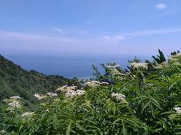 Yin-yang Sea view , MJ - August 2017