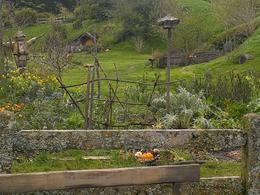 A garden in Hobbiton , Colleen K - October 2013