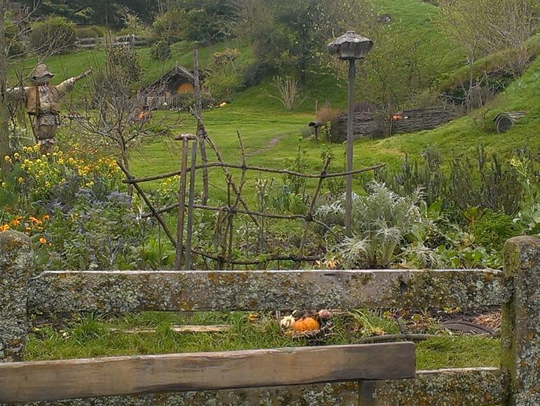 A Hobbit garden - Auckland