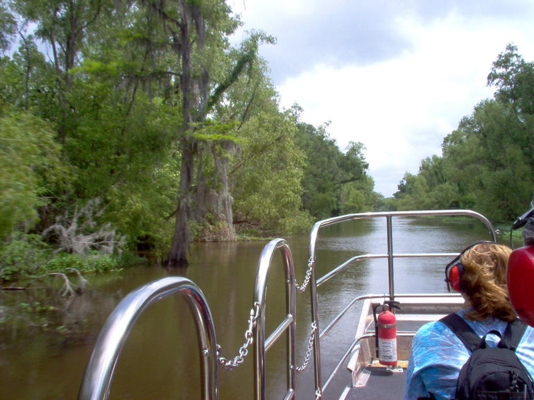Bayou Tour - New Orleans