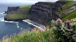 Gorgeous view of cliffs of Moher , ANA S - July 2016