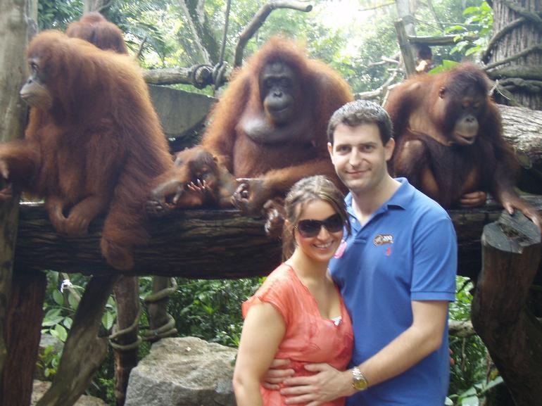 Singapore Zoo - Singapore