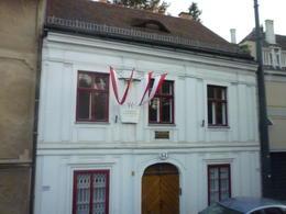 Beethoven's house, Irene - October 2013