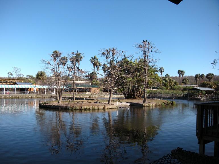 View of the park - Orlando