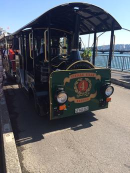 Tour tram in Geneva , Nily S - March 2017