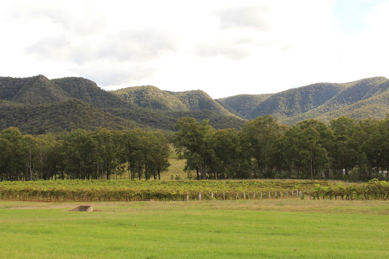 Hunter Valley - Sydney