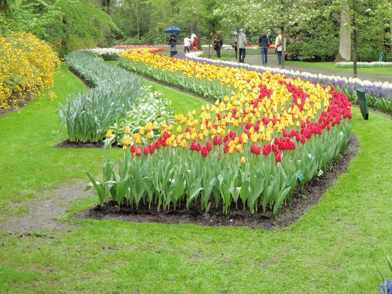 Keukenhof Garden, Lisse. - Amsterdam