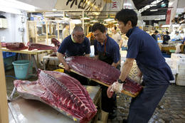 Fishermen at work at Tsukiji fish market - June 2013