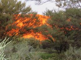 Sunrise lit Uluru up like a fire , Patricia H - October 2016