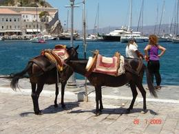 At Hydra, you may take a short ride on a donkey., Olivia Z - August 2009