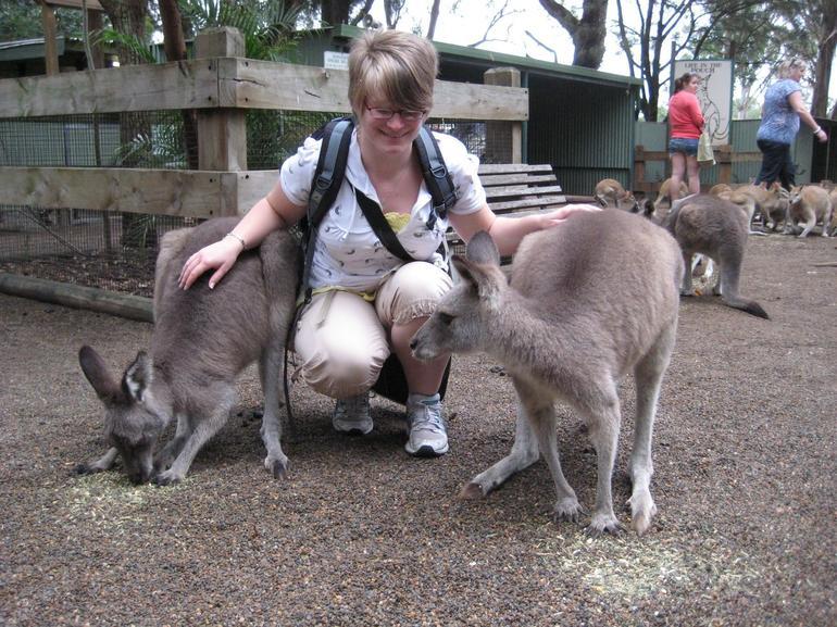 experience-kangourou-featherdale-wildlife-parc