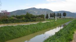 We walked back to our hotel, about 2 miles from Pisa centre, and this is the view walking towards our hotel called the Airone Pisa park (San Giuliano Terme). We had to cross over the little bridge at..., Alison - May 2010