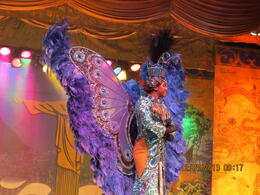 Just a sample of the exotic costumes of the Plataforma Samba show , Nancy G - January 2014