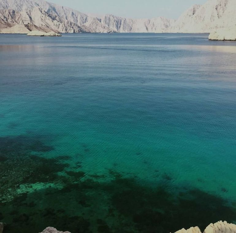 Musandam Day Trip From Dubai photo 18