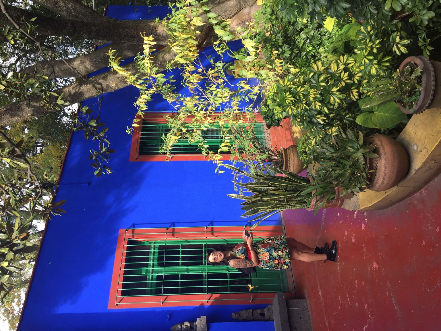 MORE PHOTOS, Private Tour: Xochimilco, Coyoacan and Frida Kahlo Museum