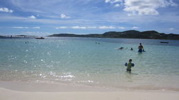 Perfect beach for young children! , knwynkoop - December 2015