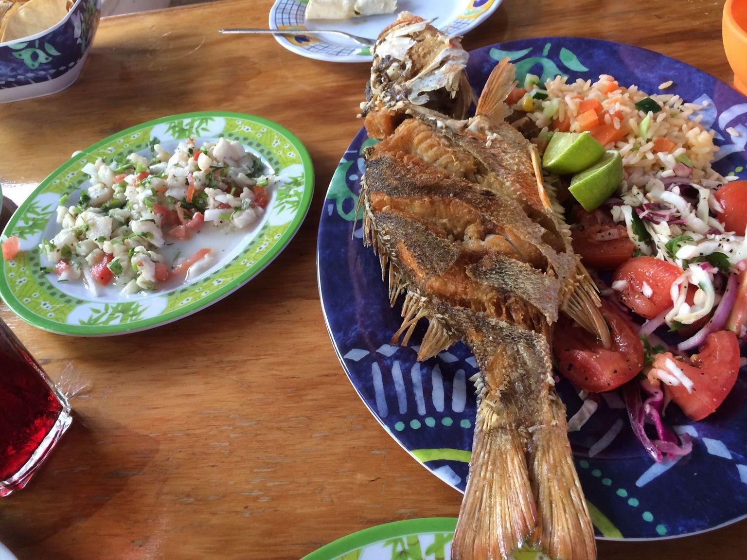 MÁS FOTOS, Recorrido gastronómico por Cozumel
