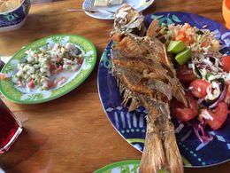 Beautiful ceviche and fried fish at Pescaderia - San Carlos. , Barbara H - May 2015