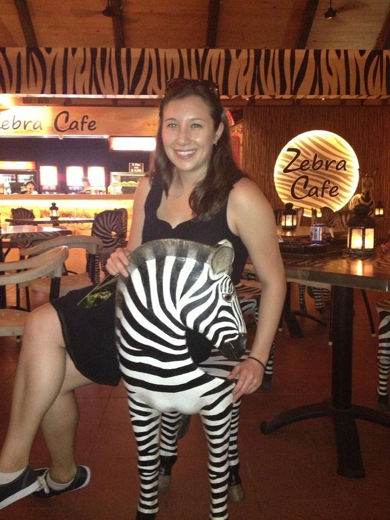 singapour-safari-café-visite-zebre