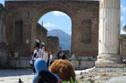 Our travel companions - Puke and Harold looking to Vesuvius from Pompeii , Peter K - June 2016