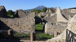 Pompeii , Marion B - January 2017