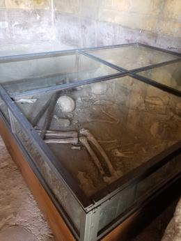 Skeletal remains preserved in one of the buildings. , Kathleen P - May 2017