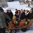 Christmas Horse-Drawn Sleigh Ride from Salzburg, Salzburgo, AUSTRIA