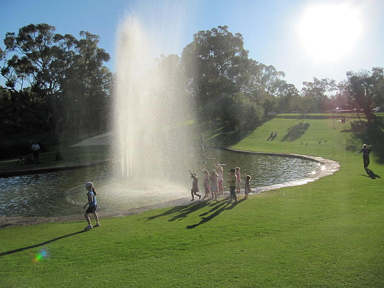 Botanic garden, Kings Park, Perth - Perth