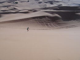 Sandboarding on the dunes near Dubai , Norman H - January 2013