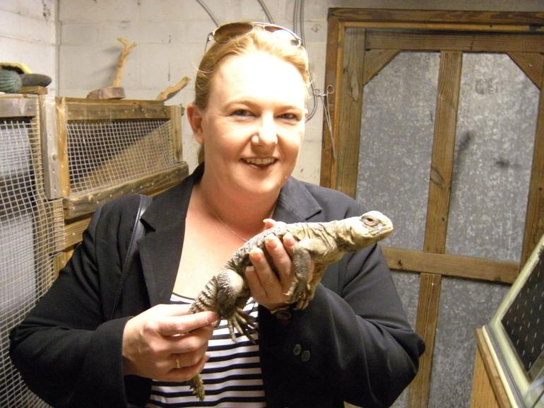 Jenny with a baby alligator - Orlando