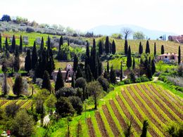 Lovely view on our way to Abbey of St. Antimo , Lee - April 2015