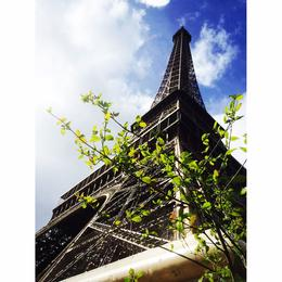 Great views of Paris all around - 360degrees! , Felix - April 2014