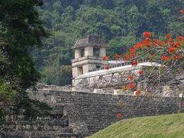 View of the palace in the ruins of Palenque. , Kevin F - May 2013