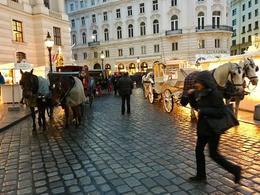 Festive , Maria - December 2016