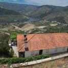 Douro Valley Tour: Wine Tasting, Lunch & River Cruise, Oporto, PORTUGAL