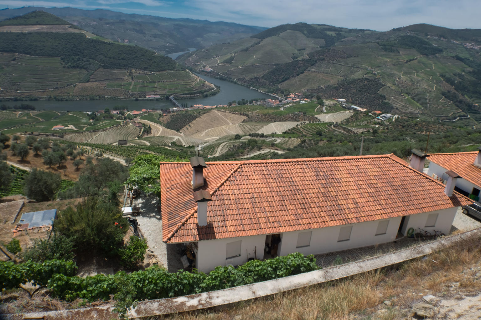 MÁS FOTOS, Douro Valley Tour: Wine Tasting, Lunch & River Cruise
