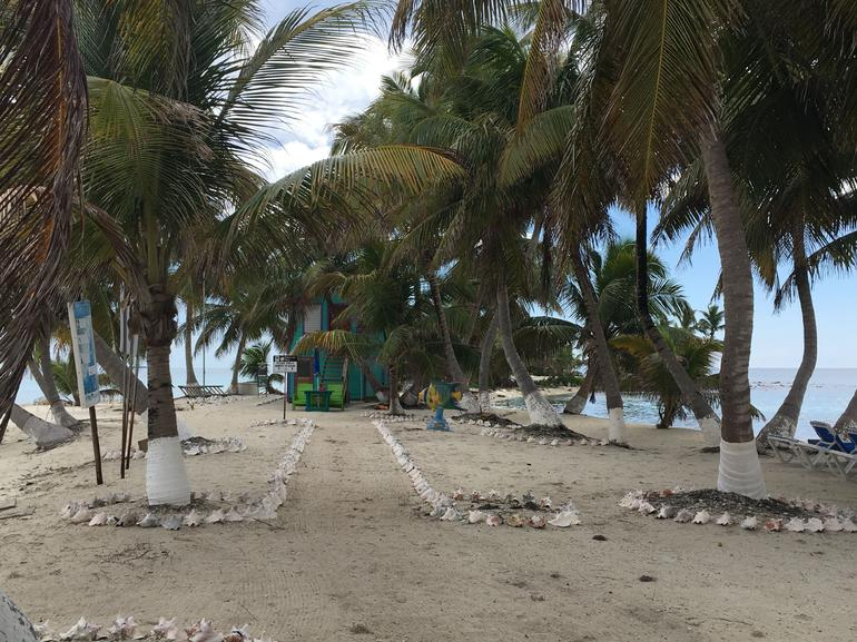 Snorkeling Adventure at Laughing Bird Caye National Park