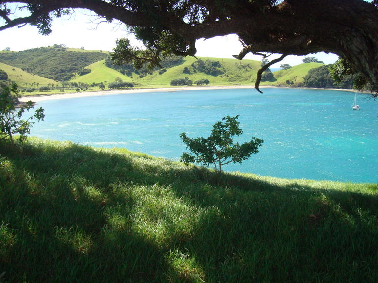 DSC03953 - Bay of Islands