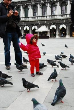 In awe with all the pigeons around! , Michael H - January 2011